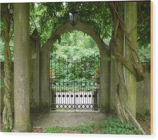 Through The Tuscan Gate Wood Print