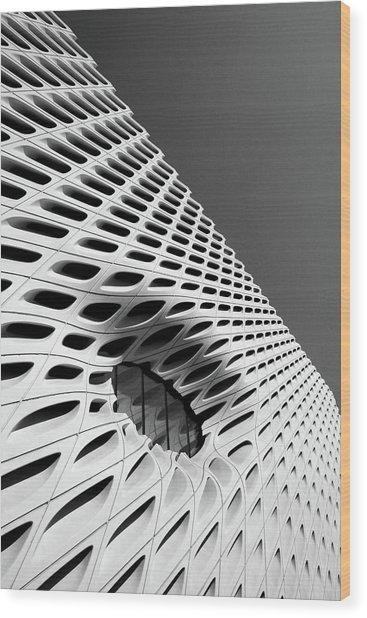 Through The Veil- By Linda Woods Wood Print
