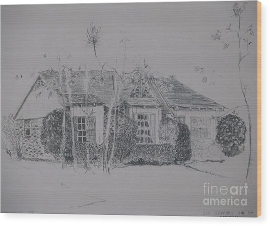 Through The Woods To Grandmother Wood Print by James SheppardIII