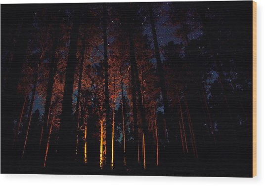 Thru The Dark Wood Print