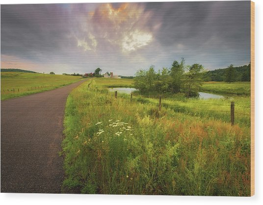 Thunderhead Over Arbutus Hill Wood Print