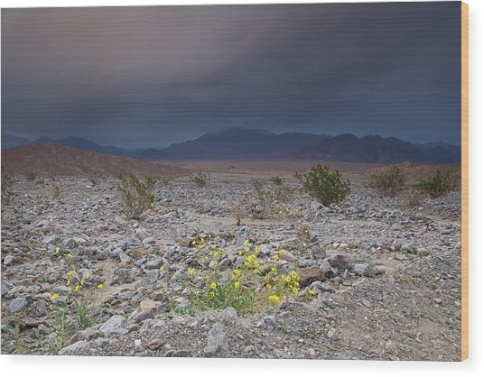 Thunderstorm Over Death Valley National Park Wood Print