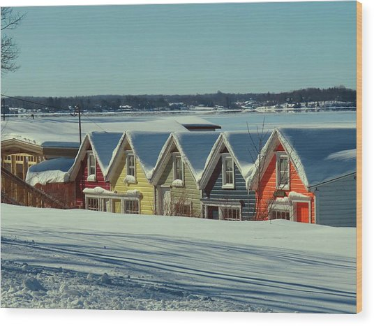 Winter View Ti Park Boathouses Wood Print
