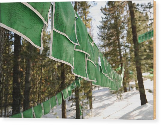 Tibetan Prayer Flags Wood Print by Jessica Rose