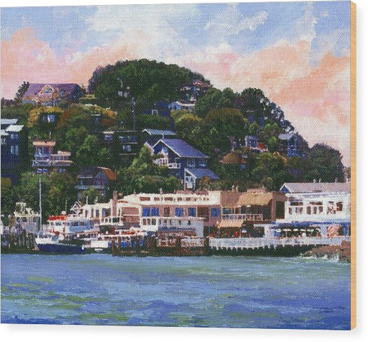 Tiburon California Waterfront Wood Print
