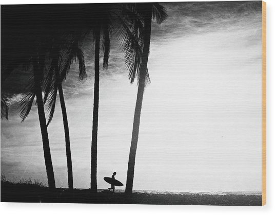 Ticla Palms Wood Print