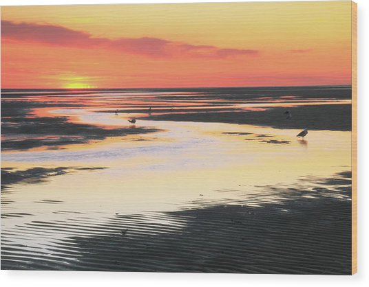 Tidal Flats At Sunset Wood Print