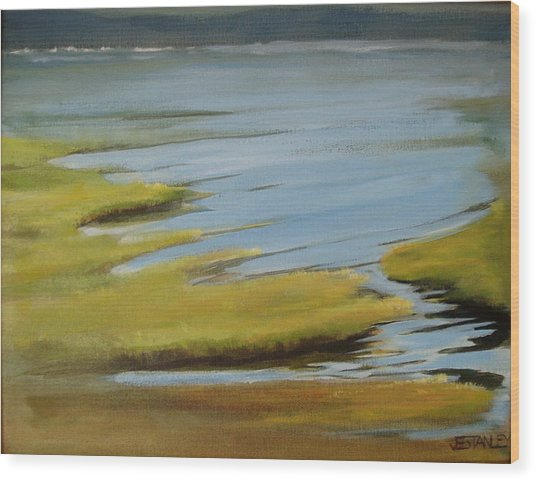 Tidal Pond Wood Print by Jenny Stanley