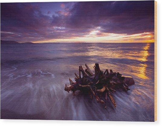 Tide Driven Wood Print