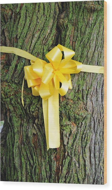 Tie A Yellow Ribbon Wood Print by Lyle  Huisken