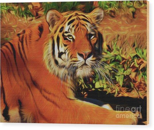 Tiger 22218 Wood Print