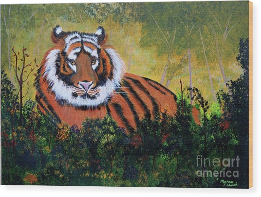 Tiger At Rest Wood Print