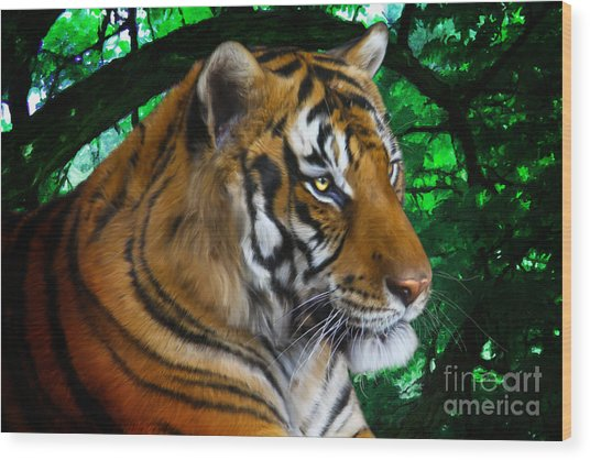 Tiger Contemplation Wood Print