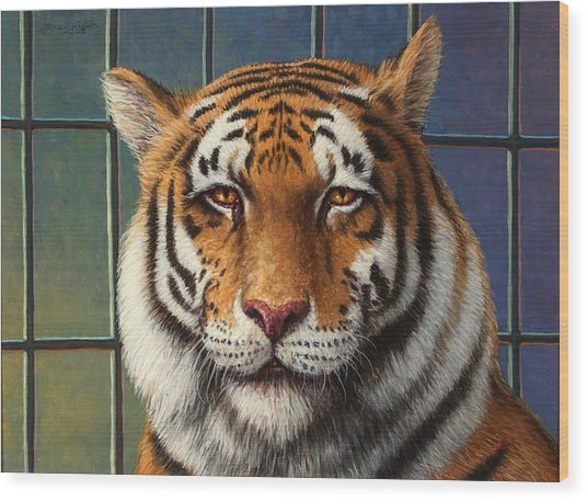 Tiger In Trouble Wood Print