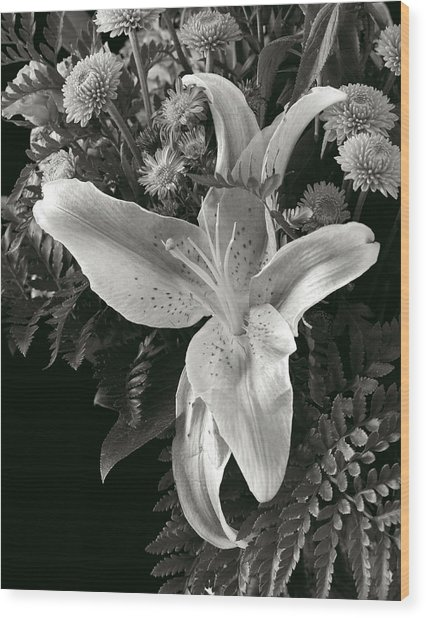Tiger Lily Orchid  2 Wood Print by David Thompson