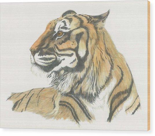 Tiger Wood Print by Liz Rose
