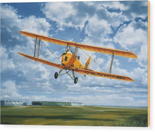 'tiger Moth - Wind Beneath My Wings' Wood Print