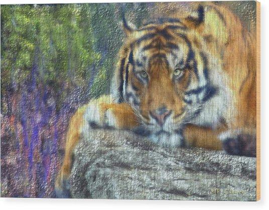 Tigerland Wood Print