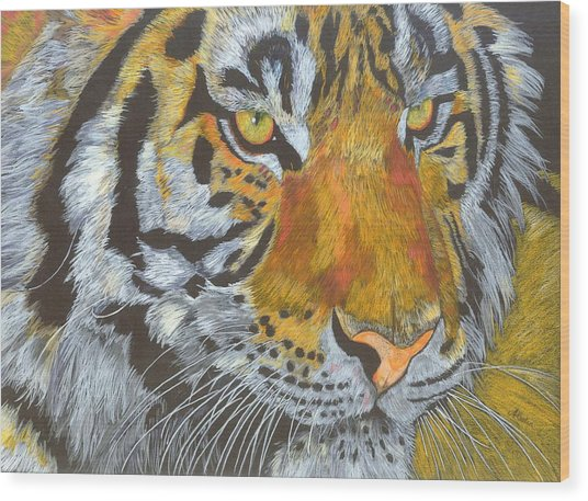 Tigress Wood Print by Angela   Cater