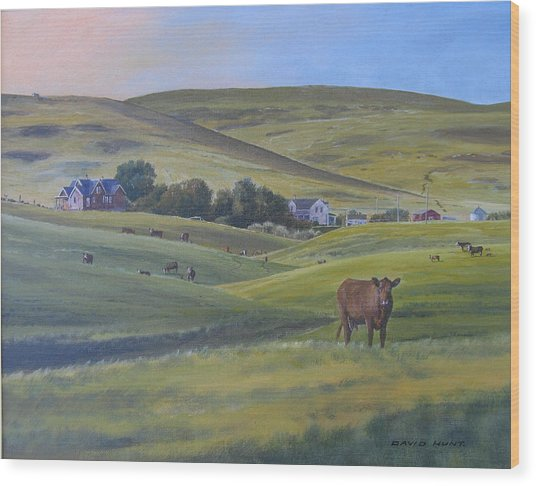 Till The Cows Come Home Wood Print by David Hunt