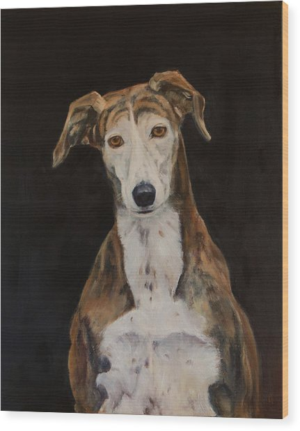 Tilly The Lurcher Wood Print