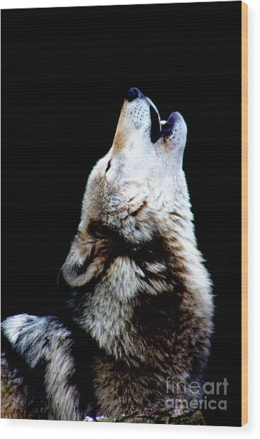 Time To Howl Wood Print