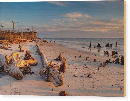 Timeless Florida Beach Wood Print by Rich Leighton