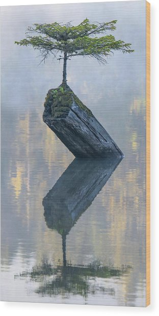 Timeless Tranquility Wood Print