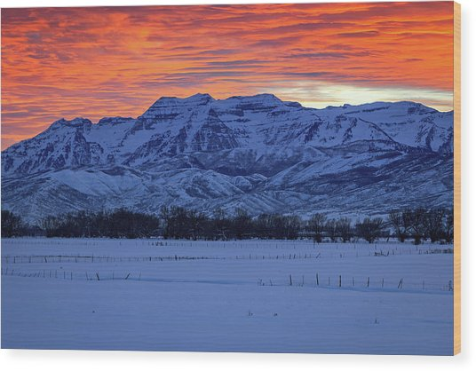 Timpanogos Burner Wood Print by Johnny Adolphson
