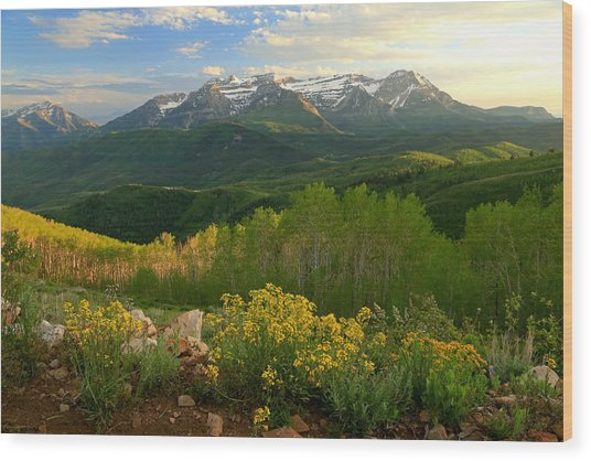 Timpanogos From Mill Canyon Peak. Wood Print by Johnny Adolphson