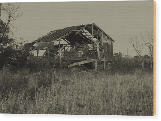 Tin Shack Wood Print by Gregory Letts