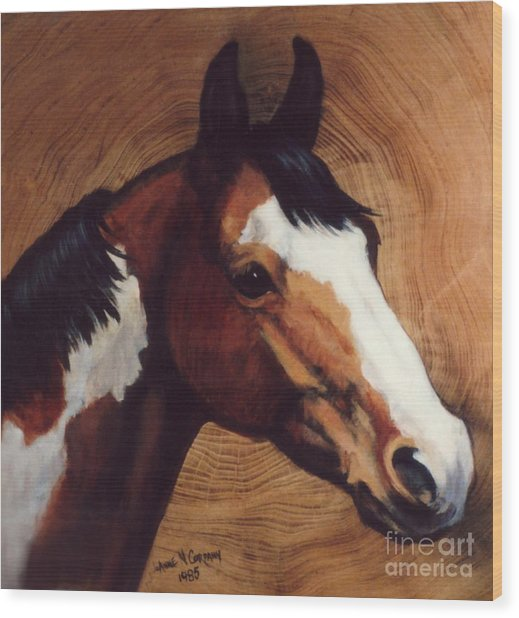 Tingeys Fancy   Paint Horse Wood Print by JoAnne Corpany