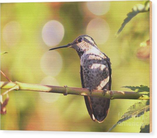 Tiny Bird Upon A Branch Wood Print