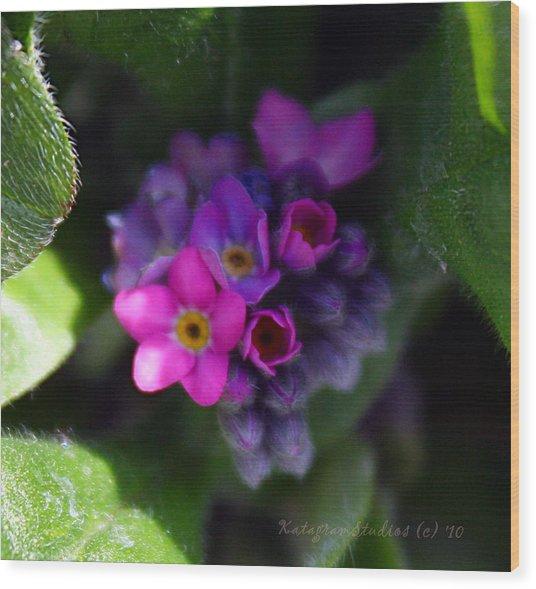 Tiny Pinks Wood Print by KatagramStudios Photography