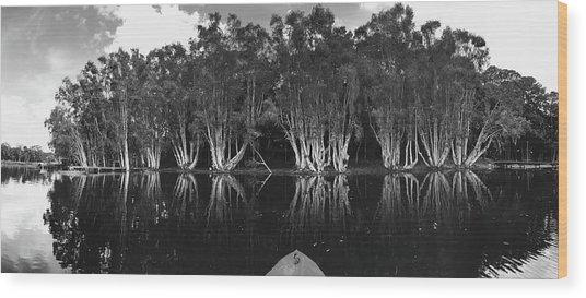 Tip Of The Kayak Wood Print by Tara Miller