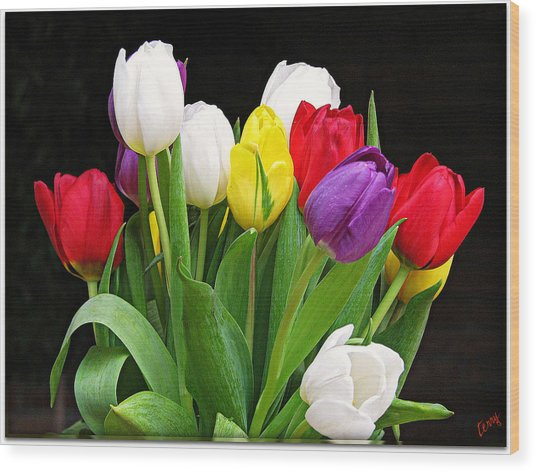 Tiptoe Through The Tulips Wood Print