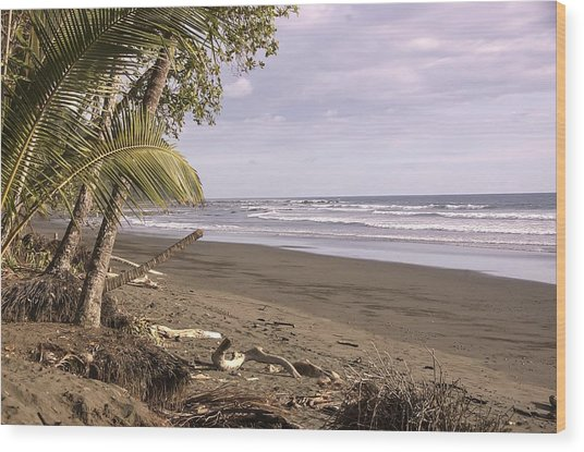 Tiskita Pacific Ocean Beach Wood Print