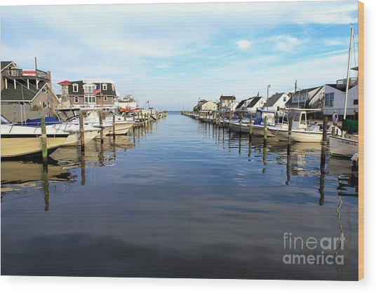 To The Sea At Lbi Wood Print by John Rizzuto