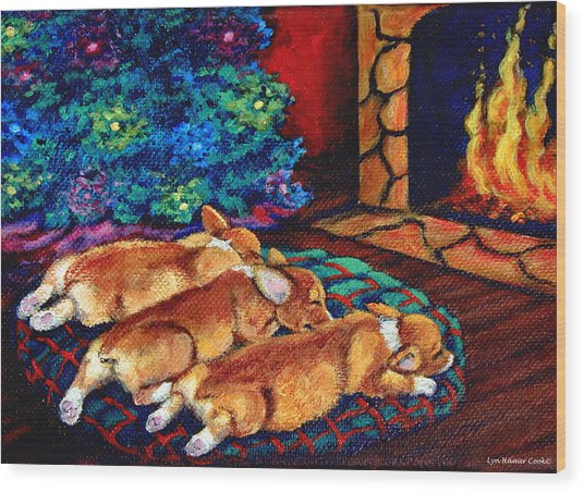 Toasty Toes Wood Print by Lyn Cook