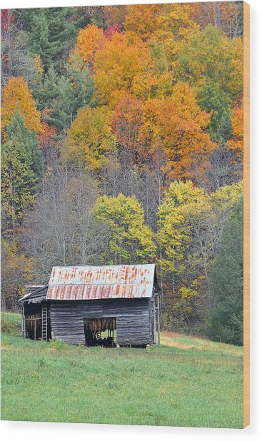 Tobacco Barn Wood Print by Alan Lenk