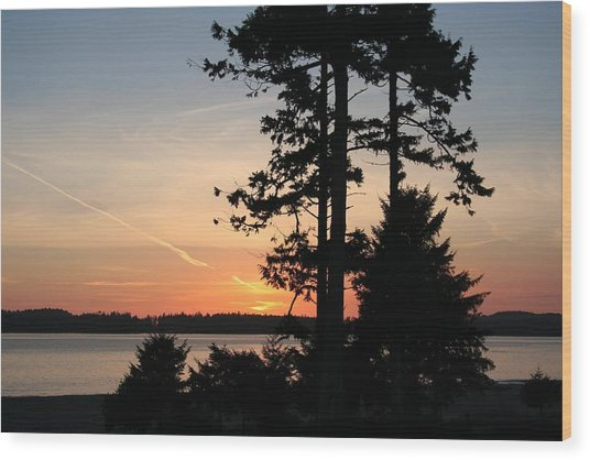 Tofino Sunset IIi Ss 1031 Wood Print by Mary Gaines