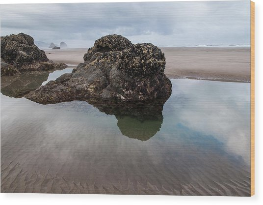 Tolovana Beach At Low Tide Wood Print