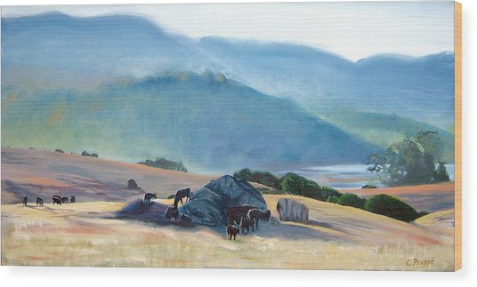 Tomales Twilight Wood Print by Colleen Proppe