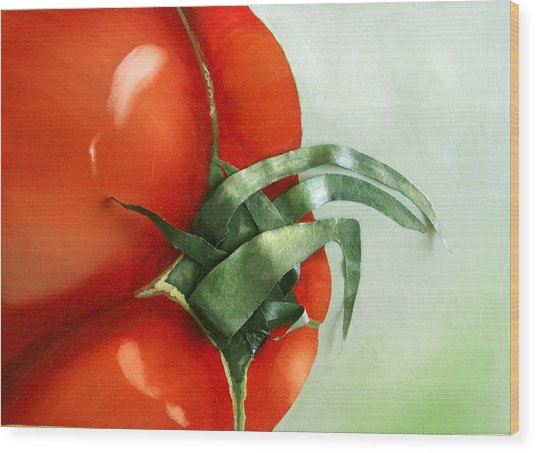 Tomato - Original Sold Wood Print by Cathy Savels