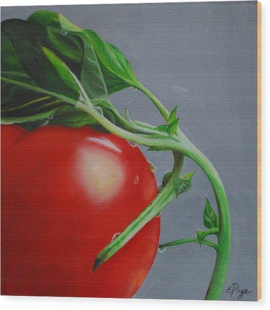 Tomato And Basil Wood Print