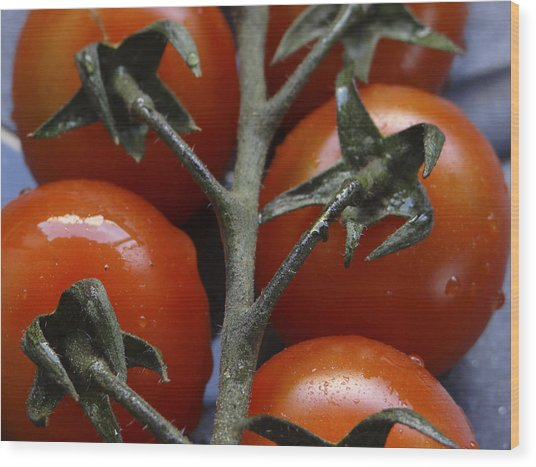 Tomato Wood Print by Angela Aird