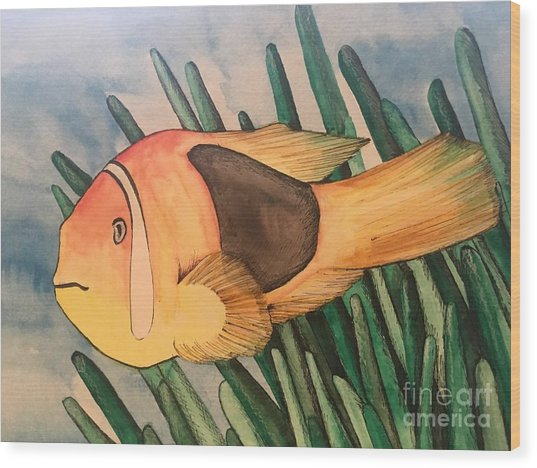 Tomato Clown Fish Wood Print