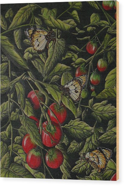 Tomatoes Wood Print by Joshua Armstrong