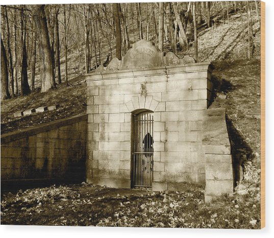 Tomb With A View In Sepia Wood Print