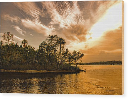 Tomoka River At Sunset Wood Print